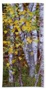 Birch In Autumn Bath Towel