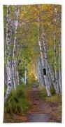 Birch Path Bath Towel
