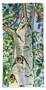 Birch Tree Sketchbook Project Down My Street Hand Towel