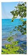 Birch Trees Above Lake Superior Off North Country Trail In Pictured Rocks National Lakeshore-mi Bath Towel