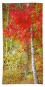 Birch Trees In Autumn Bath Towel