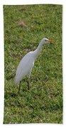 Bird Is The Word Hand Towel