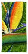 Bird Of Paradise #300b Bath Towel
