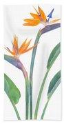 Bird Of Paradize Flowers Bath Towel
