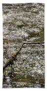 Bird On A River Bath Towel