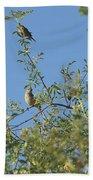 Birds At Peters Canyon Bath Towel