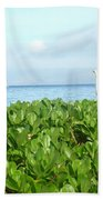 Bird's-eye View Of Hawaii Bath Towel