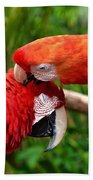 Birds In Love Bath Towel