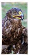 Birds Of Prey Series 3 Bath Towel