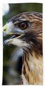 Birds Of Prey Series Bath Towel