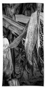 Black And White Ear Of Corn On The Stalk Bath Towel
