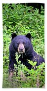 Black Bear Eating His Veggies Hand Towel