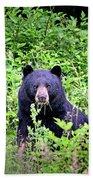Black Bear Eating His Veggies Bath Towel