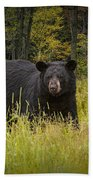 Black Bear In The Grass Hand Towel
