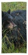 Black Bear Sow Bath Towel