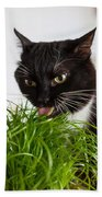 Black Cat Eating Cat Grass Bath Towel