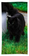 Black Cat Maine Bath Towel