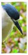 Black-crowned Night Heron Bath Towel