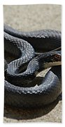 Black Racer Bath Towel