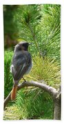 Black Redstart Bath Towel