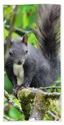 Black Squirrel In The Cherry Tree Bath Towel