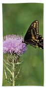 Spicebush Swallowtail Butterfly Bath Towel