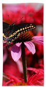 Black Swallowtail Butterfly With Coneflower And Monarda Bath Towel