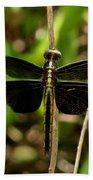 Widow Skimmer Dragonfly Female Bath Towel