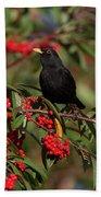 Blackbird Red Berries Bath Towel