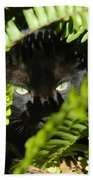 Blackie In The Ferns Bath Towel