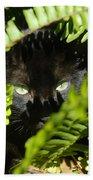 Blackie In The Ferns Bath Towel