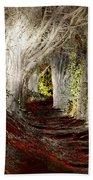 Blood Redwoods Hand Towel