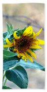Bloom Where You Are Planted Bath Towel