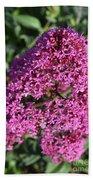 Blooming Pink Phlox Flowers In A Spring Garden Bath Towel
