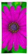 Blooming Purple Bath Towel
