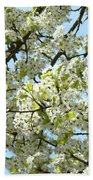 Blossoms Whtie Tree Blossoms 29 Nature Art Prints Spring Art Bath Towel