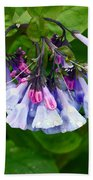 Blue Bells Bath Towel