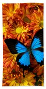 Blue Butterfly On Mums Hand Towel