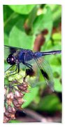 Blue Dasher Bath Towel