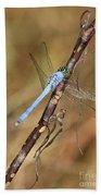 Blue Dragonfly Portrait Bath Towel