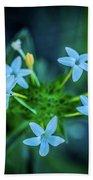 Blue Dreams Bath Sheet by Shiela Kowing