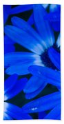Blue Daisies, Medford Oregon Bath Towel
