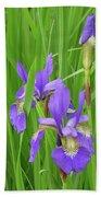 Blue Flag Iris-1  Bath Towel