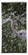 Blue Heron In Grass 4566 Bath Towel