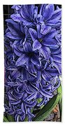 Blue Hyacinth Bath Towel