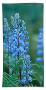 Blue Lupine In The Tetons  Bath Towel