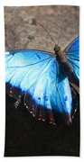 Blue Morpho #2 Bath Towel