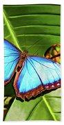 Blue Morpho Butterfly 2 - Paint Bath Towel