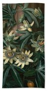 Blue Passion Flower For The  Temple Of Flora By Robert Thornton Bath Towel