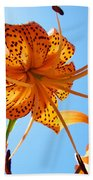 Blue Sky Tiger Lily Floral Garden Art Prints Baslee Troutman Bath Towel